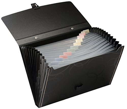 Snail Amp Hawk 13 Pockets Poly Accordion Expanding File Folder